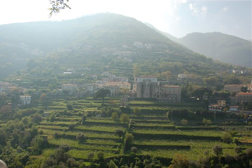 scala {view from ravello}
