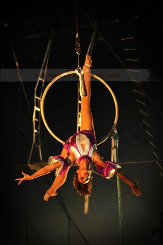 circus10web