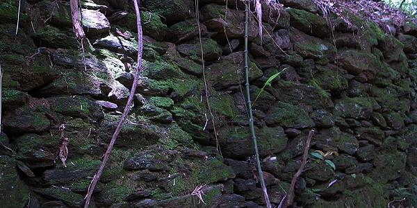 コケの石垣