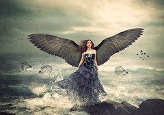 I can't be tamed (Desire Delgado) Tags: ocean sea portrait woman bird girl angel photoshop self dark mar wings waves fineart manipulation cage ave fallen alas dreams autorretrato olas pjaro fotomontaje desireedelgado cantbetamed