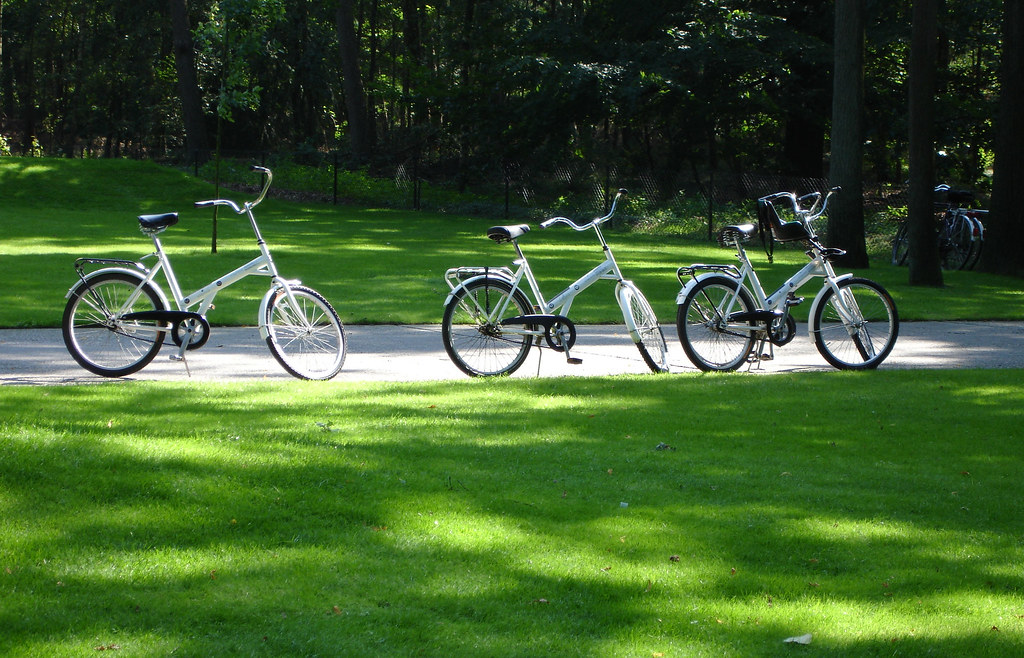 White bikes in the national park of the Netherlands
