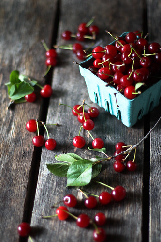 [152/365] sour cherries