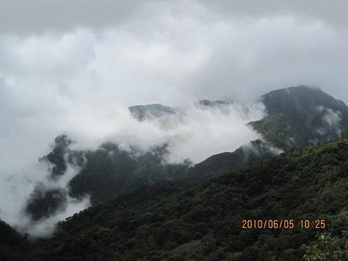 Kiwi0821 拍攝的 IMG_2170。