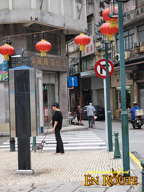 Macau Old Town Dog Park