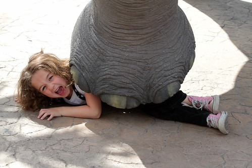 Kids Giving you problems? Hire an Elepha by peasap, on Flickr