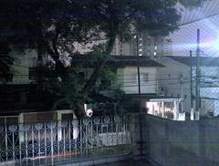 20100611_001b.jpg