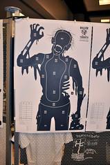 Zombie Apocalypse: Target Practice