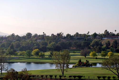 Jacaranda Vista