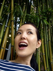 (JuhaOnTheRoad) Tags: woman usa newyork bamboo queens yoko noguchimuseum