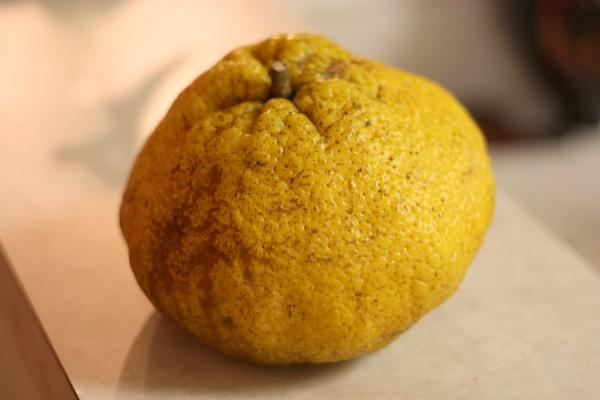 Ugly Fruit - outside