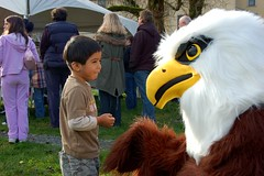 "Harrison the eagle • <a style=""font-size:0.8em;"" href=""http://www.flickr.com/photos/51193137@N08/4710345132/"" target=""_blank"">View on Flickr</a>"