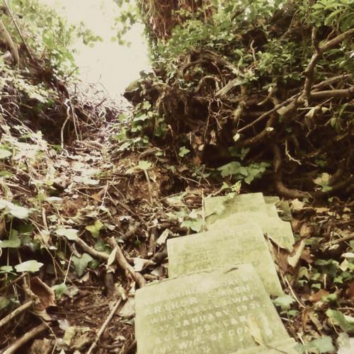 Nunhead Cemetery 5~ gravestones