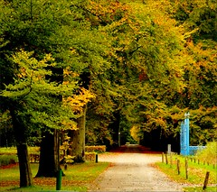 The blue gate . (Franc Le Blanc) Tags: autumn trees nature yellow lumix panasonic bluegate drunen