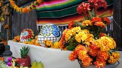 DSC05892 (haphopper) Tags: flowers autumn halloween  themepark tokyodisneysea 2010 tds tdr     lostriverdelta