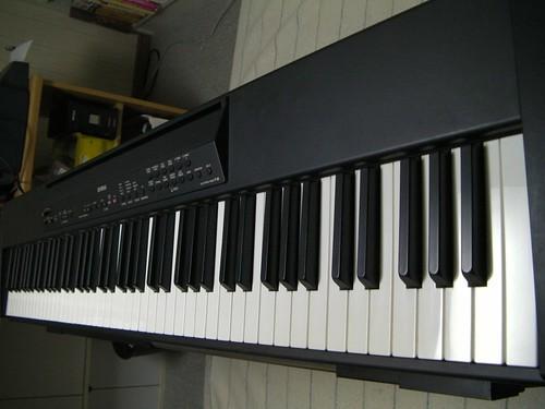 SANY0053