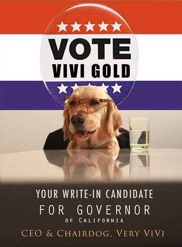 Miss ViVi Gold Announces Her Candidacy for Governor of California