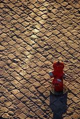 J'aime le soleil ! (Insane Focus) Tags: street light urban sun art photoshop sunrise hydrant fire photography photo insane nikon focus photographer image artistic pics snapshot picture snap fragment lightroom d80 insanefocus photographicshot