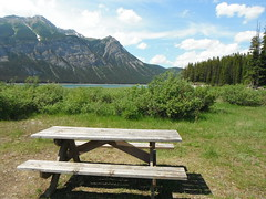 #hbm  #bearcountry #picnic (Mr. Happy Face - Peace :)) Tags: yyc albertabound art2017 cans2s canadaparks summer bench benchmonday nature forest