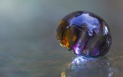 jelly fish devine (rockinmonique) Tags: eleven marvellousmarbles glass reflections tiny colour juneflickrgalsmeetup moniquew canon canont6s tamron copyright2017moniquew