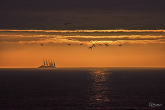On the horizon (bradders29) Tags: portknockie windstarcruises windsurf sailingship dawn sunrise grahambradshaw ocean coast scotland coastline