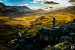 Magic Valley ©DeschampsDamien (deschdam6@gmail.com) Tags: morning light sunrise setoflight landscape people nature iceland wild wilderness peaceful quiet land pointofview scenery photo photography photographer valley river rock moss escape freedom explore magic earth life yellow green sky clouds fall season islande paysages