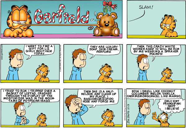Garfield: Lost in Translation, December 13, 2009