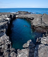 Galapagos (alh1) Tags: cruise santiago beagle lava galapagos pools blowholes jamessisland