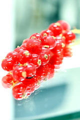 Red (CristalArt) Tags: red food white macro colors yellow fruit digital canon photography eos blurry background cranberries 500d