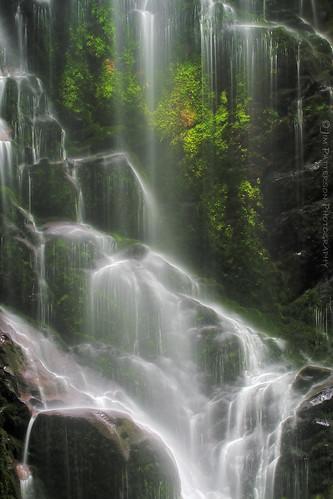 Berry Creek Falls - Big Basin State Park, California