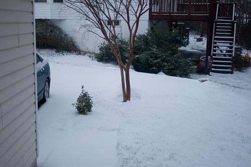 Snow....Again!
