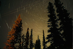 star trails (Mike Bingley) Tags: longexposure canada film k1000 alberta 2009 startrails campgardner charityprint
