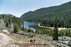 Rocky Mountains  - Cub Lake