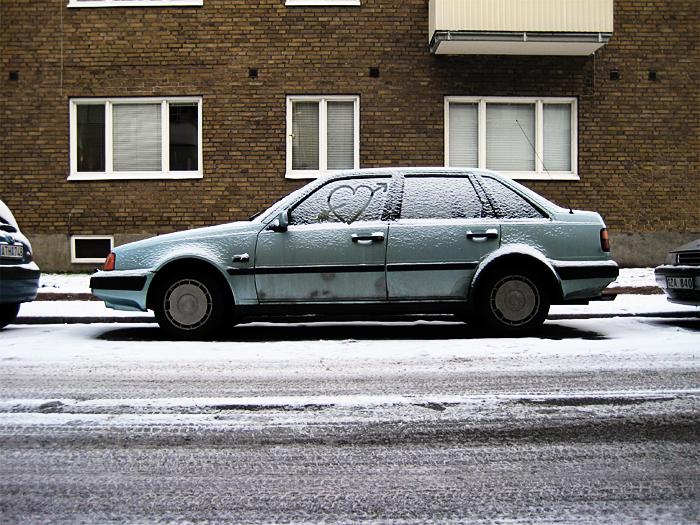 snowy bumper love