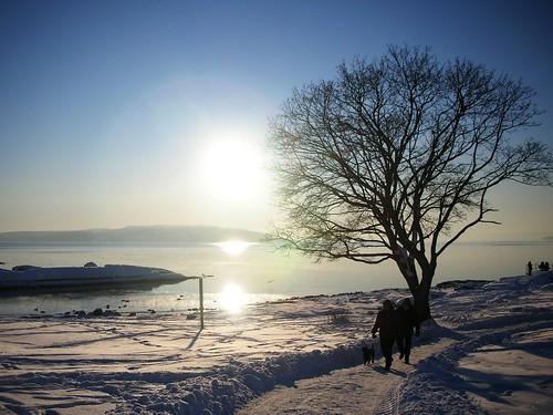 The Magic of extreme cold and snow at Oslo Fjord #11
