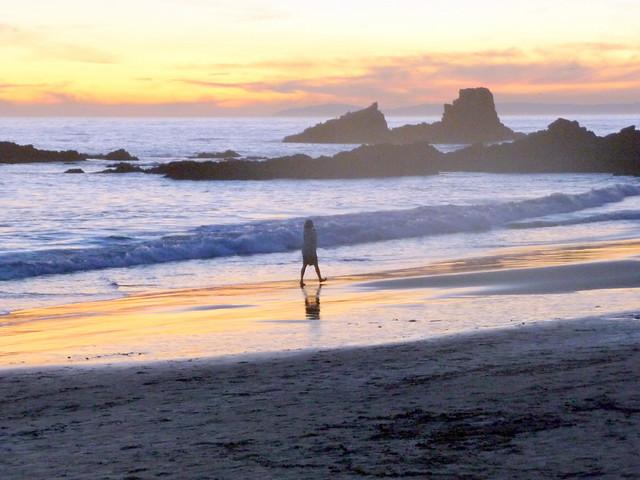 Patrick Nouhailler visiting Laguna Beach 1-3-2010 12-13-21 PM