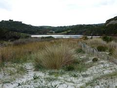 Ruisseau de Sperone : l'étang de Sperone