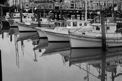 Lucky Lady, Day 222 of 365 (DieselDemon) Tags: sanfrancisco california blackandwhite bw reflection water boats fishermanswharf workboats 365project canonrebelxti