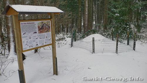 Wildpark Schwarze Berge in Hamburg