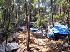 Illegal miner huts (Mangiwau) Tags: green sumatra indonesia banda aloe mercury kali air traditional mining illegal saya gunung aceh mane hijau emas anak sungai perak peti masyarakat meulaboh raksa penambangan sigli pidie atjeh tutut izin tanpa geumpang woyla merkuri ujoen