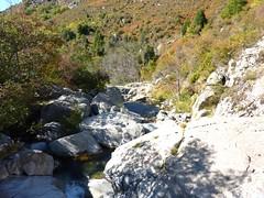 Sentier du ruisseau de San Petru : le ruisseau en aval de la vasque