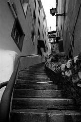 Gorantz (Igorza76) Tags: bw white black blanco stairs puerto harbor negro sigma bn zb 1020 zuri beltza bizkaia euskalherria euskadi escaleras bermeo portua bermio blackwhitephotos ekilarak