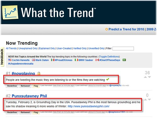 what_the_trend_01.png