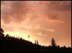 The Perfect Ending 4... (Canoecat) Tags: trees sunset sky britishcolumbia clearwater naturesfinest blueribbonwinner otw dutchlake bej anawesomeshot concordians ilovemypics damniwishidtakenthat withskypost1award3 dragonflyawardsgroup holidays2009
