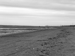 Crosby Beach (nepygill) Tags: gormley anotherplace ironmen crosbybeach