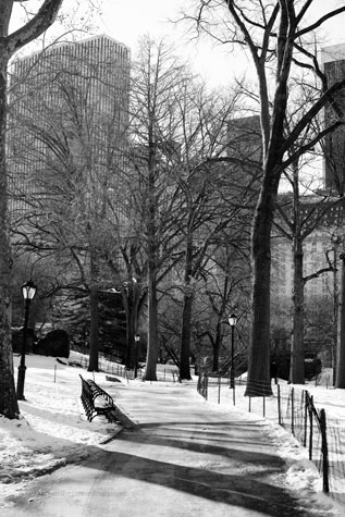 New-York_Feb052009_0916BWweb