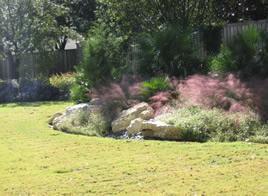 backyard landscape service