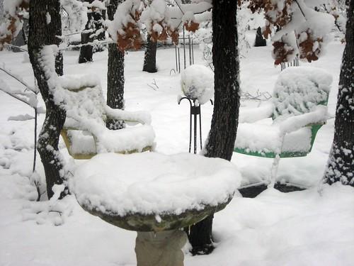 2010February12_Snow 005