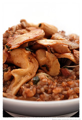 Farro Risotto with Mushrooms© by Haalo