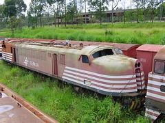 FPM508 Locomotiva Fepasa 6105 (Fernando Picarelli Martins) Tags: locomotive ge generalelectric scrapped fepasa locomotiva plundering electriclocomotive rffsa saqueadores redeferroviáriafederalsa locomotivaelétrica ferroviapaulistasa classe2cc2 fepasanº6105 estaçãodetriagem sucateada