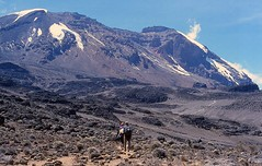 path to the lava tower (marlesghillie) Tags: africa kilimanjaro trek tanzania volcano climb high altitude kibo adeventure mountaun
